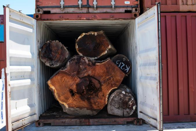 One of 19 containers of Kwila—a slow-growing hardwood—seized by the Customs Department of the Solomon Islands. The cargo was billed as milled Kwila, which has significantly less export duties and value abroad than uncut Kwila. Image by Monique Jaques. Solomon Islands, 2020.