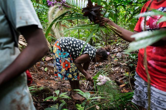 Conservationist Mary Osirii collects flowers. Women from the village of Igwa volunteer to police the Ngu Brothers logging company to make sure they only log where they're supposed to. Image by Monique Jaques. Solomon Islands, 2020.