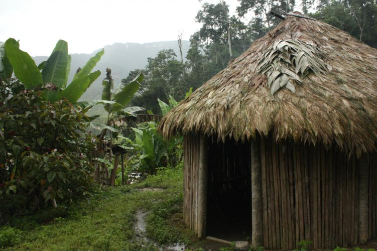 The area where the mine will be developed is populated by indigenous Shuar peoples – who live in huts like this one – and Cañari Kichwa. Image by Andrés Bermúdez Liévano. Ecuador, 2019.