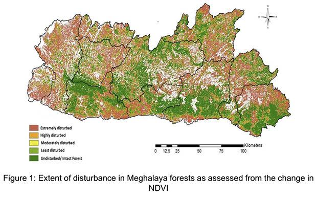 "Half of the the state's forests are ""extremely disturbed"" due to the impact of climate change, according to a study by scientists from the IISc-Bangalore. Graphic courtesy of Assessment of the Impact of Climate Change on Forests and Biodiversity of Meghalaya."