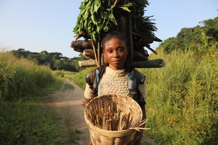 Mafi Esefa collects wood and cassava leaves. Image by Peter Yeung/The Los Angeles Times. Congo, 2020.